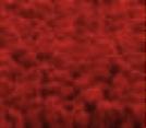 Raumklima Mooswaende Dekoration Innenarchitektur12 - Natürliche Wandelemente - <br/>als schöne Dekoration und für ein angenehmes Raumklima